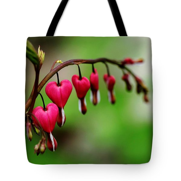 Tote Bag featuring the photograph Bleeding Hearts Flower Of Romance by Debbie Oppermann