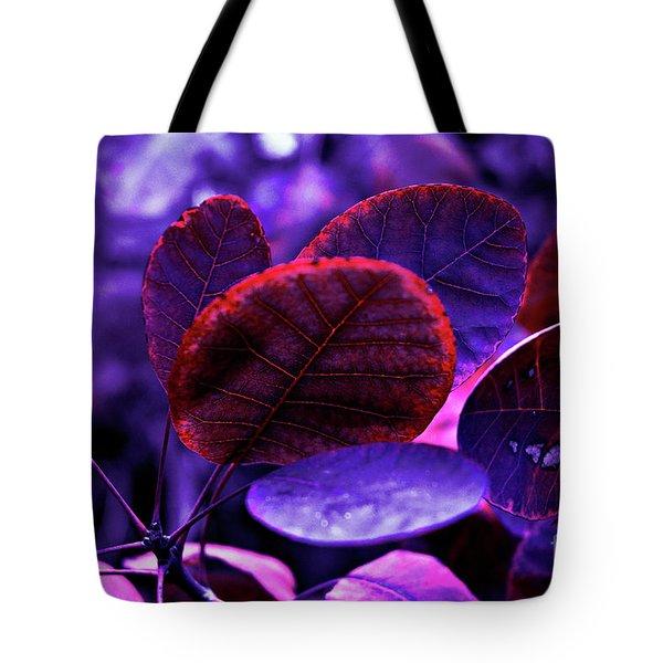 Tote Bag featuring the photograph Bleeding Violet Smoke Bush Leaves - Pantone Violet Ec by Silva Wischeropp