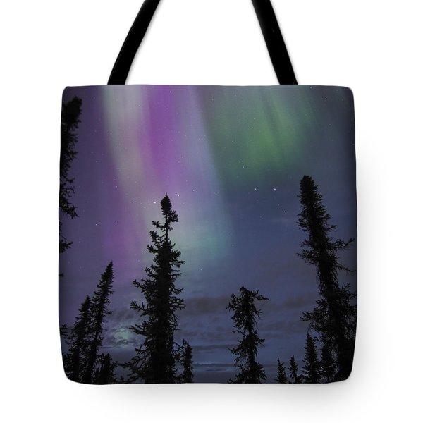 Blended Purples Tote Bag
