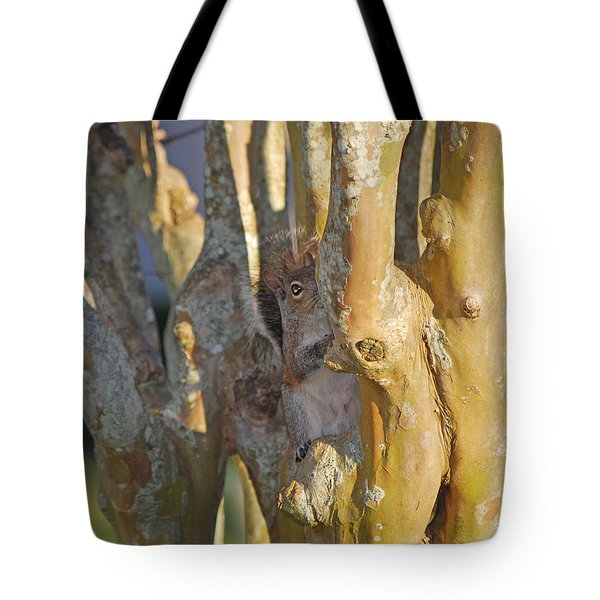 Blending In Tote Bag by Adele Moscaritolo