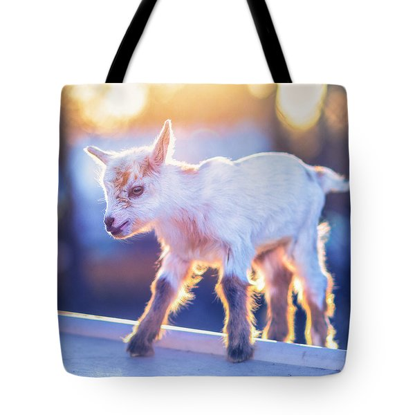 Little Baby Goat Sunset Tote Bag