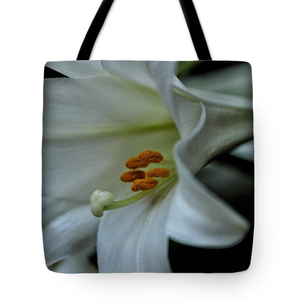 Tote Bag featuring the photograph Blessings  by Connie Handscomb
