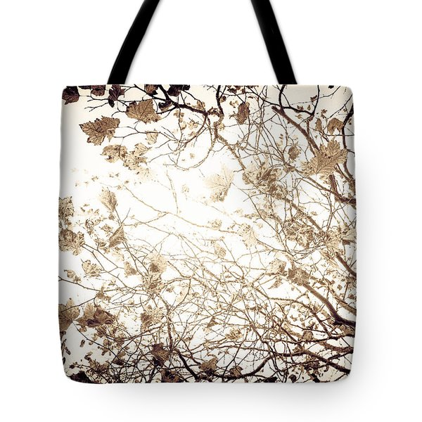 Tote Bag featuring the photograph Blinding Sun by Lora Lee Chapman