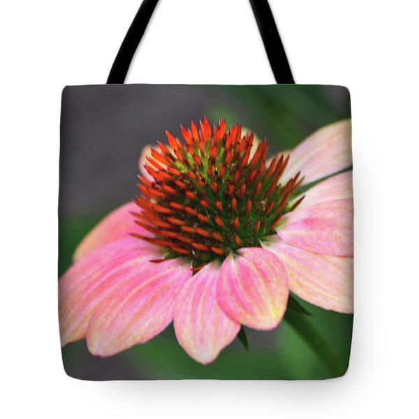 Blissful Bloom Tote Bag