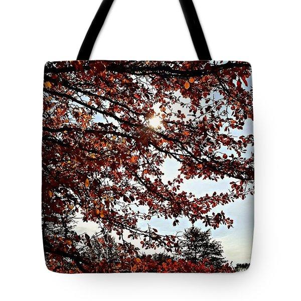 Blister  Tote Bag by Jana E Provenzano