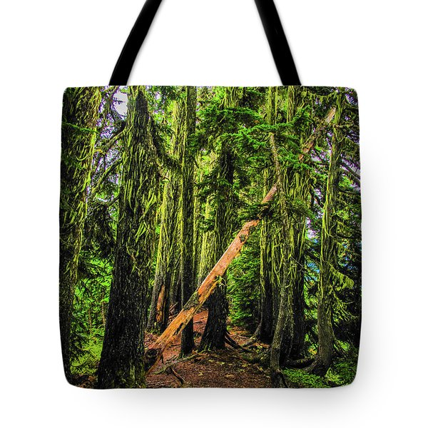 Blocked Trail Tote Bag