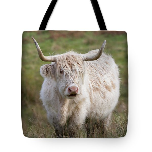 Tote Bag featuring the photograph Blondie by Karen Van Der Zijden