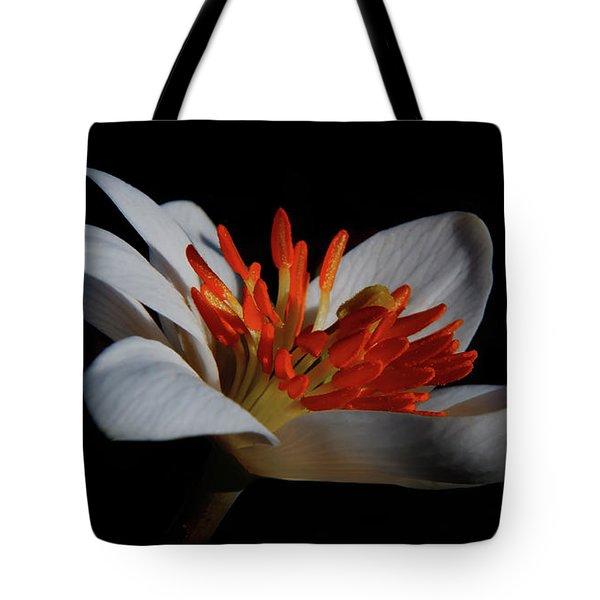 Bloodroot Art Tote Bag