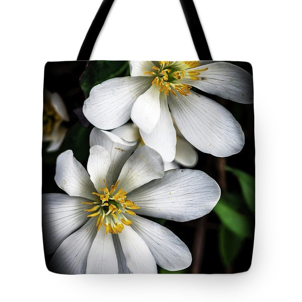 Tote Bag featuring the photograph Bloodroot In Bloom by Thomas R Fletcher