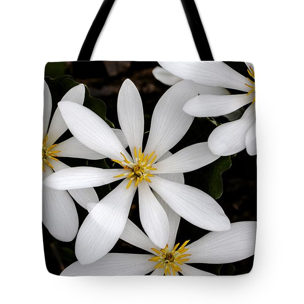 Sanguinaria Tote Bag by Skip Tribby