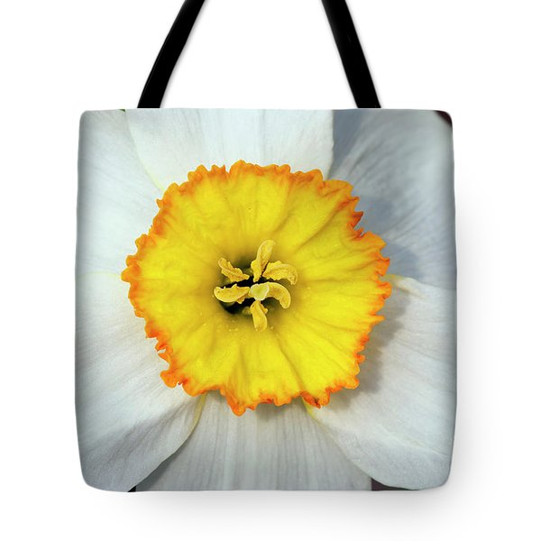 Bloom Of Narcissus Tote Bag by Michal Boubin