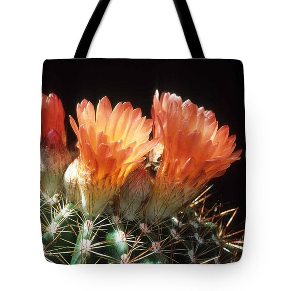 Bloomin' Barrel Tote Bag by Laurie Paci