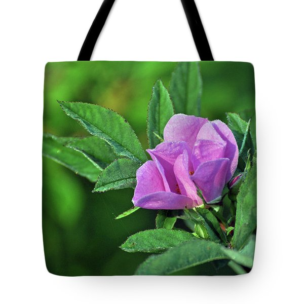 Bloomin Tote Bag by Glenn Gordon