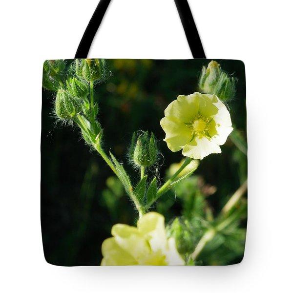 Bloomin Happy 1 Tote Bag