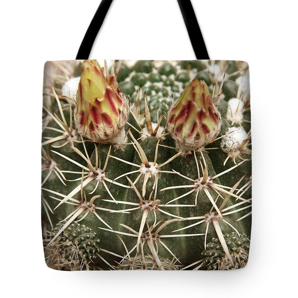 Blooming Cactus1 Tote Bag