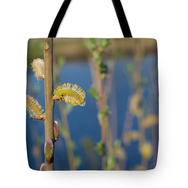 Tote Bag featuring the photograph Blooming Catkins by Hans Engbers