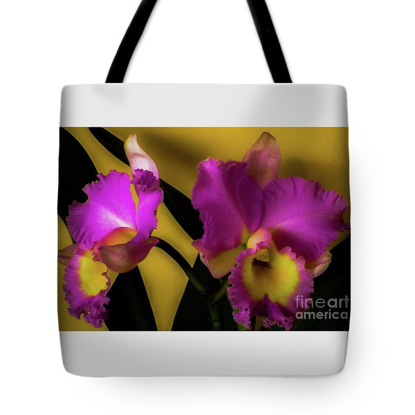 Blooming Cattleya Orchids Tote Bag