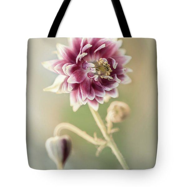 Tote Bag featuring the photograph Blooming Columbine Flower by Jaroslaw Blaminsky