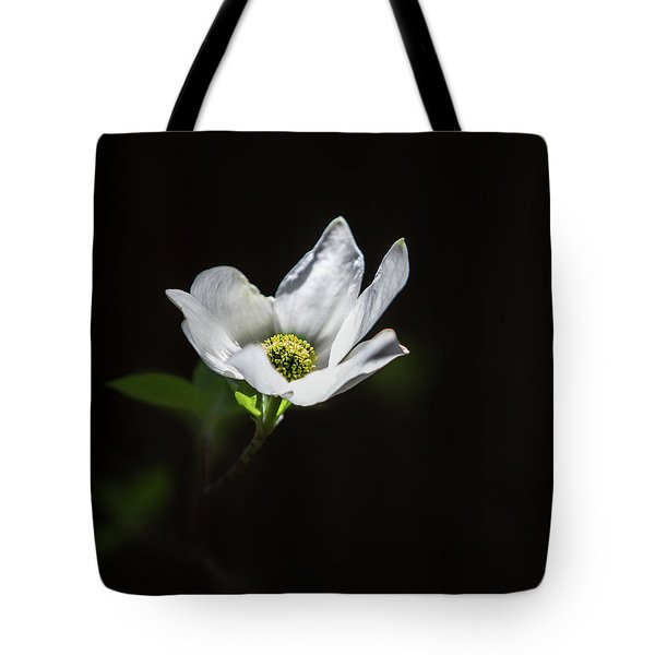 Blooming Dogwoods In Yosemite 3 Tote Bag