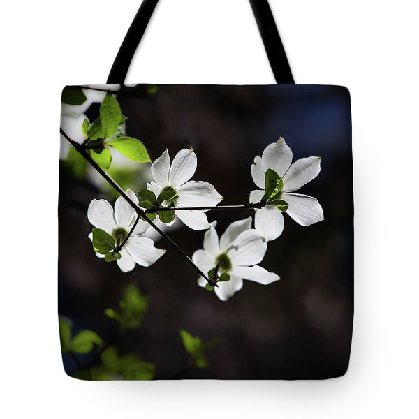 Blooming Dogwoods In Yosemite 4 Tote Bag
