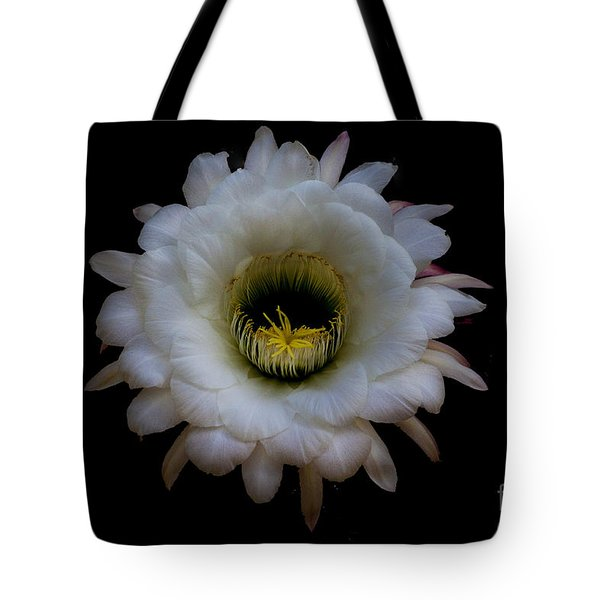 Blooming Echinopsis Candicans Tote Bag