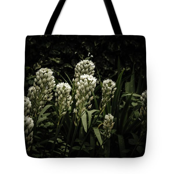 Tote Bag featuring the photograph Blooming In The Shadows by Marco Oliveira