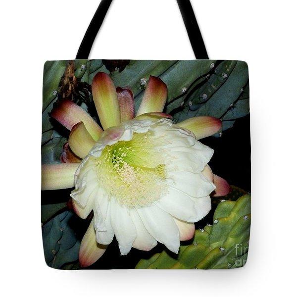 Blooming Night Cereus Tote Bag