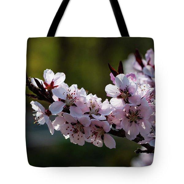 Blooming Peach Tree Tote Bag