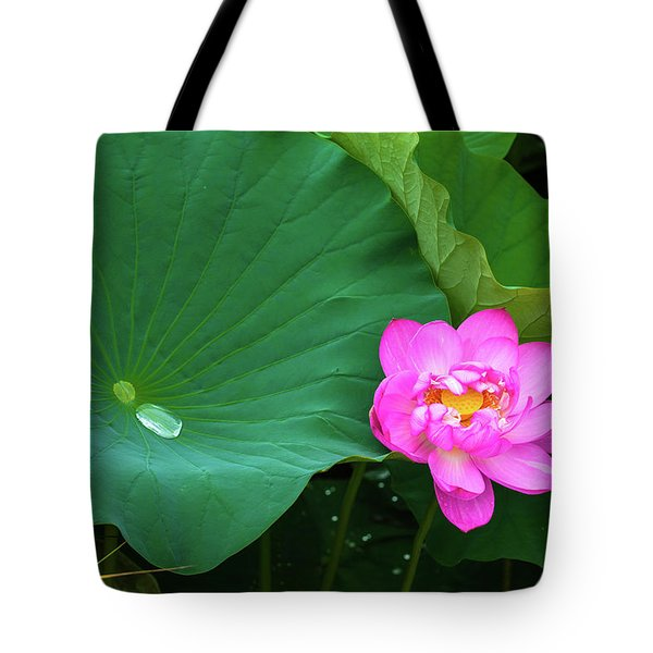 Tote Bag featuring the photograph Blooming Pink And Yellow Lotus Lily by Dennis Dame