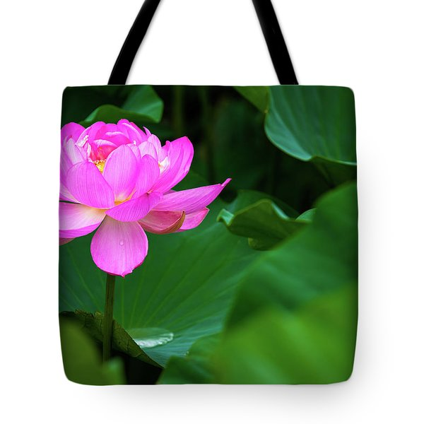 Tote Bag featuring the photograph Blooming Pink Lotus Lily by Dennis Dame