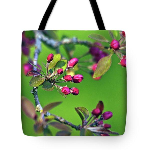 Blooming Spring Poetry Tote Bag