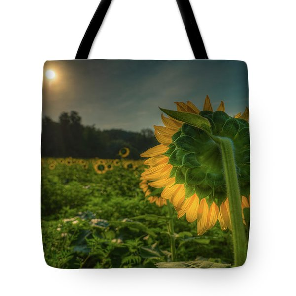 Tote Bag featuring the photograph Blooming Sunflower Facing Rising Sun by Dennis Dame