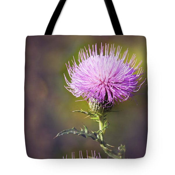 Blooming Thistle Tote Bag