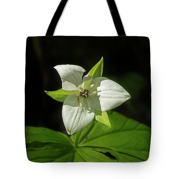Tote Bag featuring the photograph Blooming Trillium by Mike Eingle