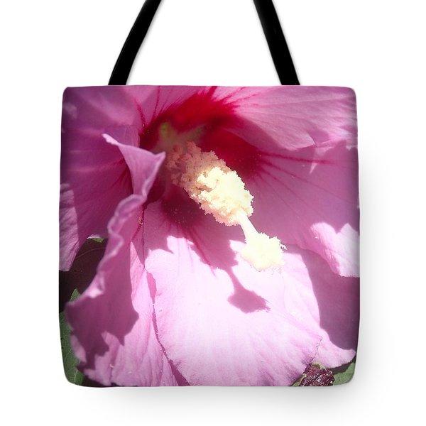Blossom At Kirby Park Tote Bag