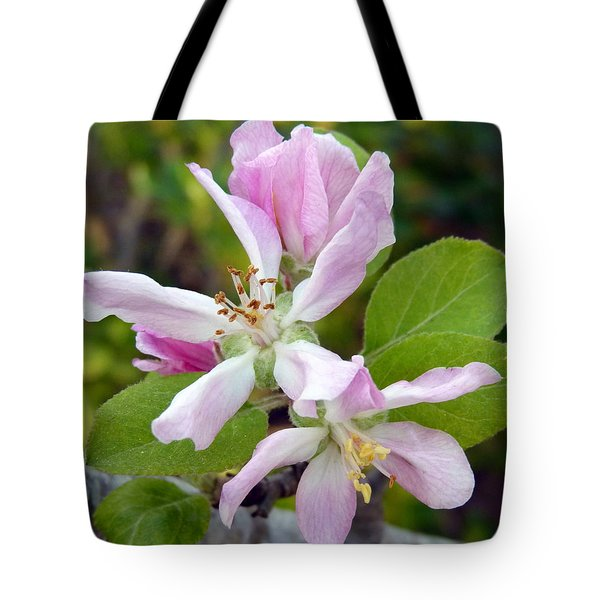 Blossom Duet Tote Bag by Carla Parris