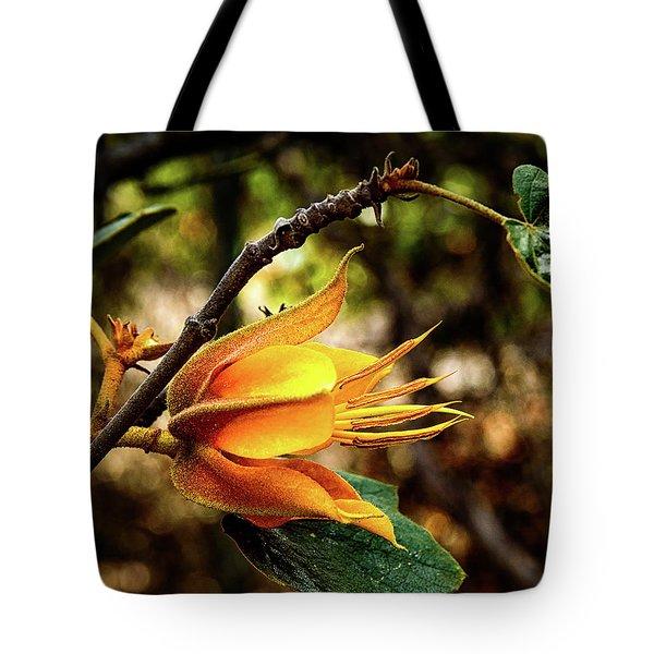 Blossom Of Orange Tote Bag