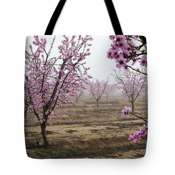 Tote Bag featuring the photograph Blossom Trail by Vincent Bonafede