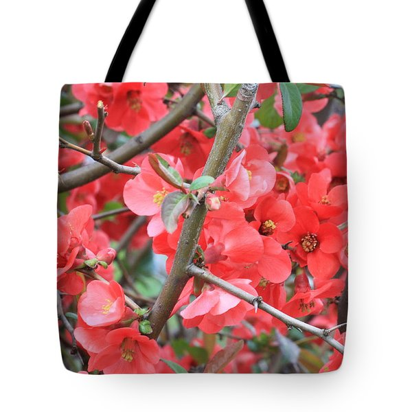 Blossoms Branches And Thorns Tote Bag by Carol Groenen