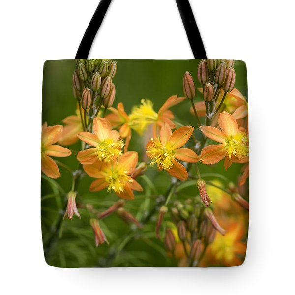 Blossoms Of Spring Tote Bag by Stephen Anderson