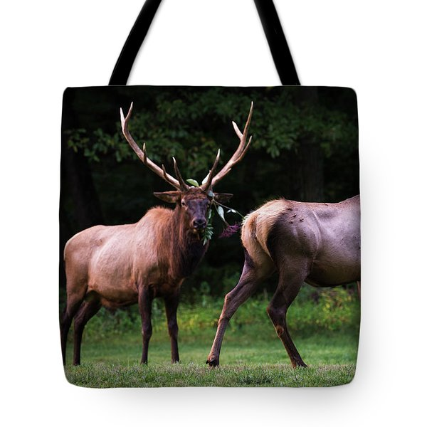Tote Bag featuring the photograph Blown Off by Andrea Silies