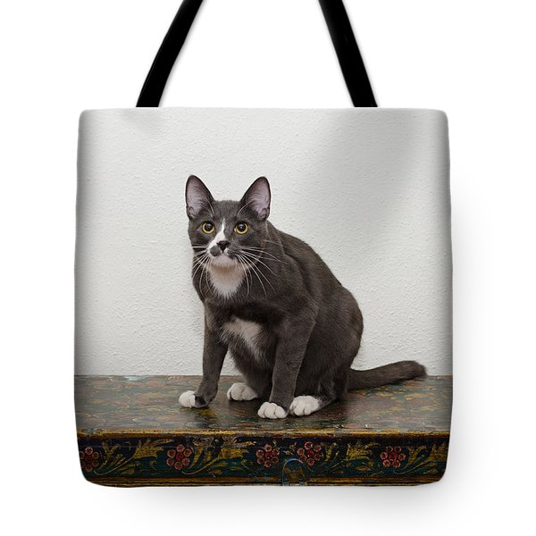 Tote Bag featuring the photograph Blue 1 by Irina ArchAngelSkaya