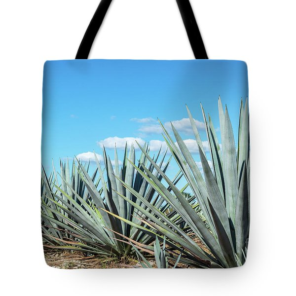 Blue Agave And Blue Sky Tote Bag