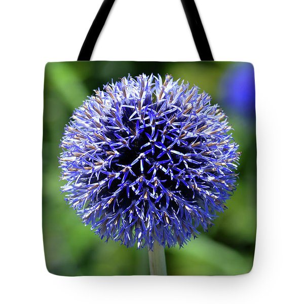 Tote Bag featuring the photograph Blue Allium by Terence Davis