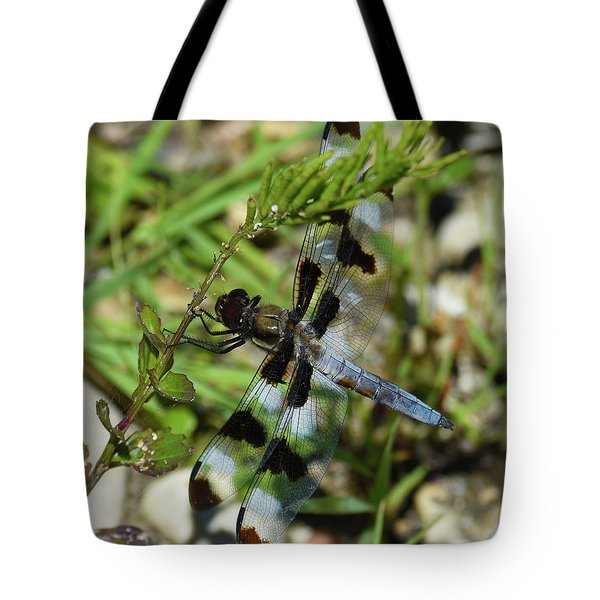 Tote Bag featuring the photograph Blue And Brown On Green by Sally Sperry