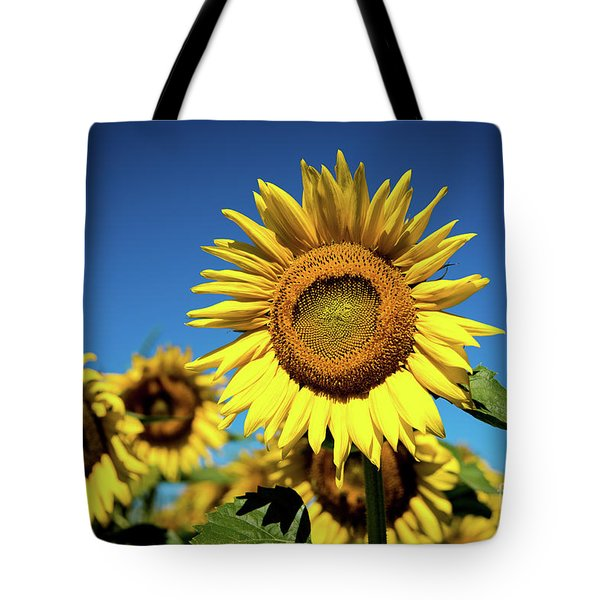 Blue And Gold Tote Bag by Sandy Molinaro