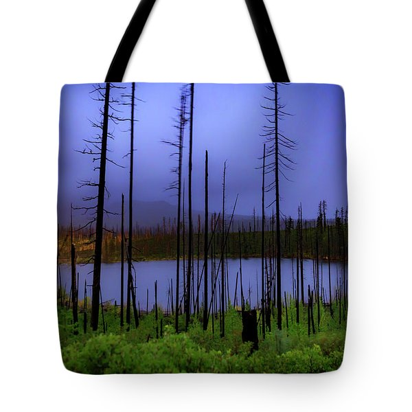 Tote Bag featuring the photograph Blue And Green by Cat Connor