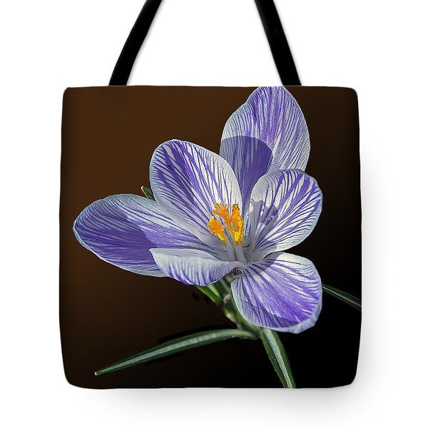Blue And White Crocus Tote Bag