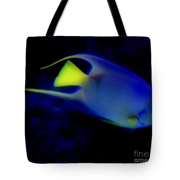 Blue And Yellow Fish Tote Bag by Kathleen Struckle