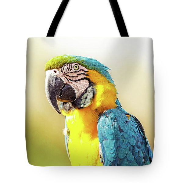 Blue And Yellow Macaw With Copy Space Tote Bag
